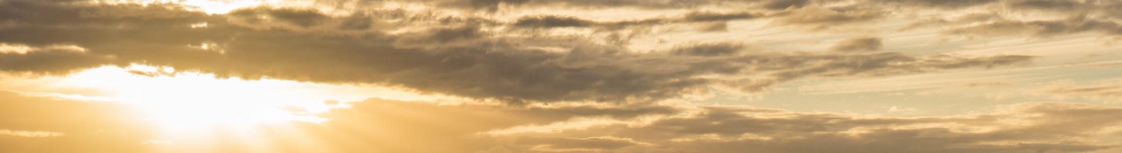 Cloud E-HRM