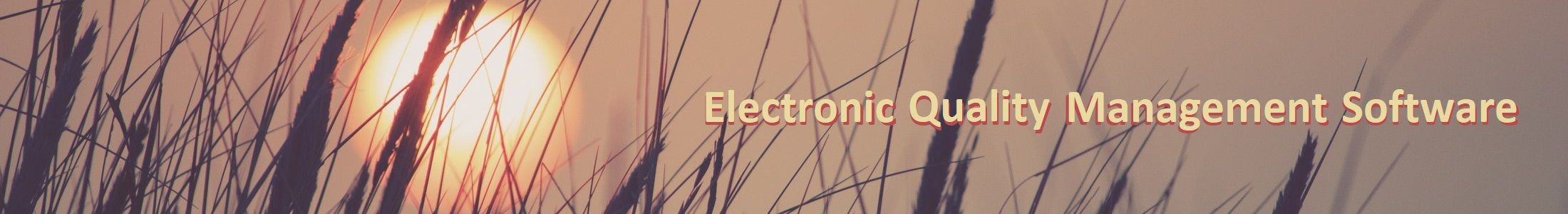 electronic quality management