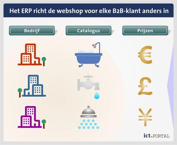 webshop erp b2b